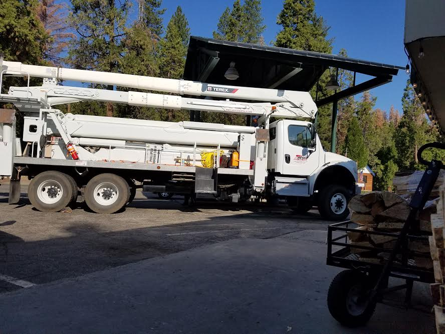 tree trimming madera ca
